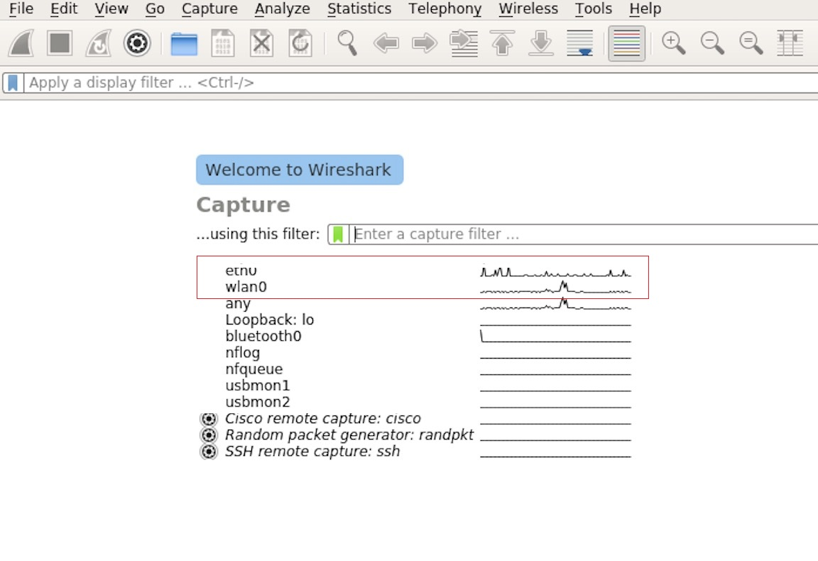 Wireshark Capture Interface